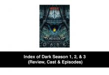 Index of Dark Season 1, 2, & 3 (Review, Cast & Episodes)