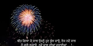 Happy New Year Wishes in Punjabi
